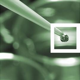 Jahresbericht IGV GmbH